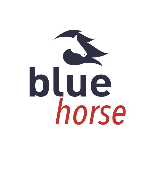 BLUE HORSE GROUP